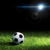 在草的足球 库存图片