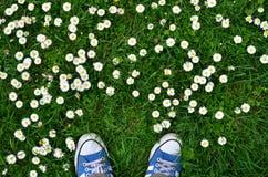 在草的运动鞋 库存照片