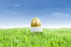 在草的金黄复活节彩蛋 库存照片