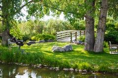 在草的长凳在桥梁和池塘之间 免版税库存照片