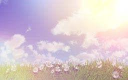 在草的雏菊在与减速火箭的作用的一个晴天 免版税库存图片