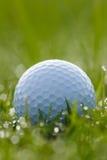 在草的高尔夫球与水下落 免版税库存照片