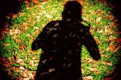 在草的阴影 免版税库存照片