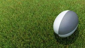 在草的黑橄榄球球 库存照片