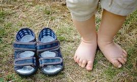 在草的Baby's脚趾 库存图片