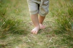 在草的Baby's脚趾 免版税图库摄影