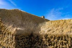 在草盖的中世纪北欧海盗小组小屋 免版税库存照片