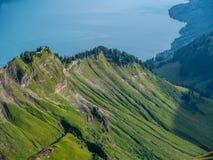 在草盖的陡峭的山后的湖brienz, brienzer rothorn瑞士 免版税库存图片