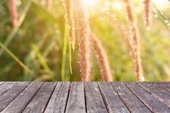 在草背景的木桌 免版税库存图片