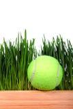 在草背景的网球 免版税库存图片