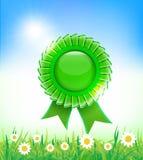 在草背景的自然绿色徽章 库存照片