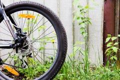 在草背景的自行车车轮  库存照片