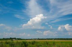 在草莓领域的云彩 库存图片