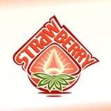 在草莓题材的传染媒介例证  免版税库存照片