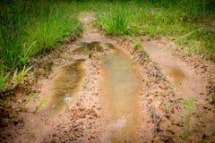 在草途中的泥泞的轮胎跟踪 库存图片
