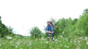 在草,在雏菊中,在草甸,跳舞,跳跃,获得乐趣,一个俏丽的女孩,大约七岁 她 股票视频