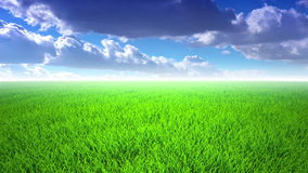 在草, cloudscape的飞行 股票视频