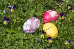 在草1的复活节彩蛋 免版税库存图片