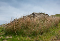 在荒野的布罗肯峰石块墙 库存照片