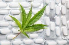 在药片顶部的大麻叶子 免版税图库摄影