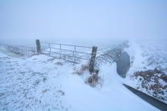 在荷兰农田的有薄雾的冷淡的早晨 库存照片
