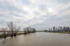 在荷兰冬天季节的被充斥的开拓地风景 免版税库存照片