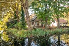 在荷兰扁圆形干酪,有树的荷兰附近的老农舍在秋天颜色 库存图片