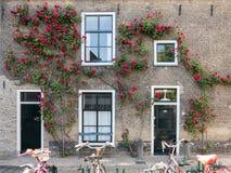 在荷兰扁圆形干酪,荷兰的老房子门面 免版税图库摄影