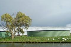 在荷兰温室上的黑暗的天空有绿色watersilos的 免版税库存照片