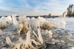 在荷兰湖的岸的附近冰柱 免版税库存图片