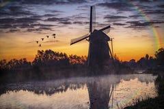 在荷兰风车的日出 库存图片