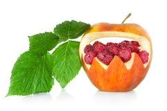 在莓叶子下的惊奇 免版税库存照片