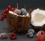 在莓蓝莓里面的椰子冷冻莓果 免版税库存图片