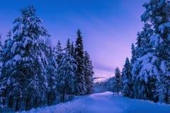 在莱维滑雪倾斜的日落在芬兰拉普兰 库存照片