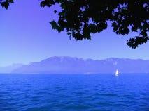 在莱芒湖的白色风帆 免版税库存图片