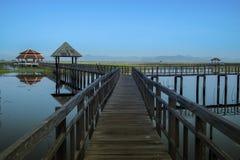 在莲花沼泽的木桥 免版税库存照片