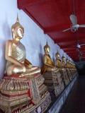 在莲花状态的Budha雕象  免版税库存图片