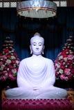 在莲花雕象,泰国的白色玉菩萨 免版税图库摄影