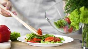 在菜盘的女性倾吐的沙拉开胃菜从碗,减重,节食 免版税库存图片