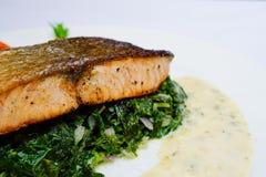 在菠菜,选择聚焦的鲑鱼排 免版税库存照片