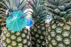 在菠萝的纸伞 库存照片