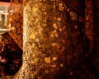 在菩萨图象的金叶 免版税库存照片