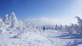在菲希特尔贝尔格的冬天 库存图片