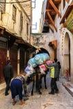 驴在菲斯麦地那在摩洛哥 免版税库存照片