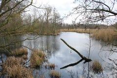 在菲英岛海岛,丹麦上的田园诗湖 库存图片