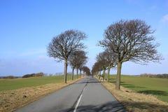 在菲英岛海岛,丹麦上的田园诗路 免版税库存照片
