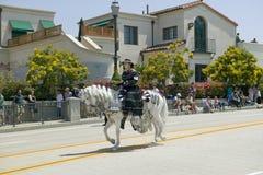 在营业日游行下降状态街道,圣塔巴巴拉,加州,老西班牙天Fiest期间,有黑西班牙语的妇女穿戴骑乘马 免版税图库摄影