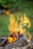 在营火的橙色火焰 免版税库存图片