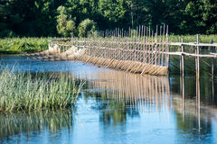 在萨拉察河设定的七腮鳗渔,拉脱维亚 库存图片