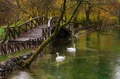 在萨拉热窝附近的自然公园 免版税库存图片